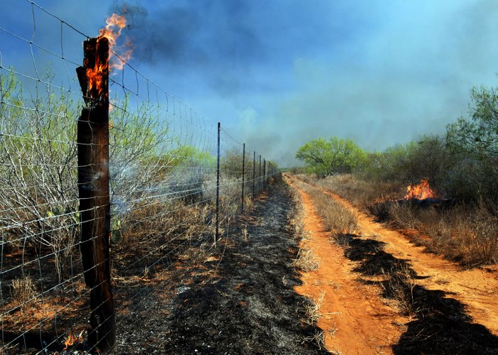 Prescribed Burning for Wildlife Management