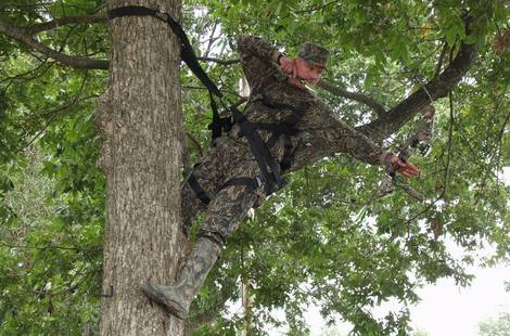 Bow hunter in a tree