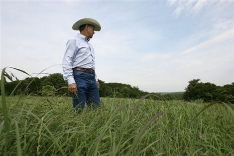 Grazing workshops come to Texas