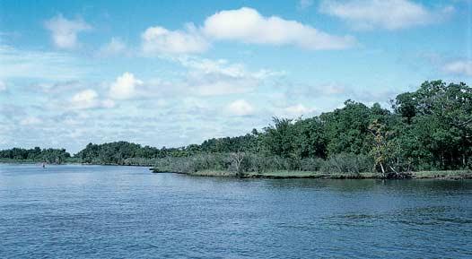 Neches National Wildlife Refuge versus Fastrill Reservoir