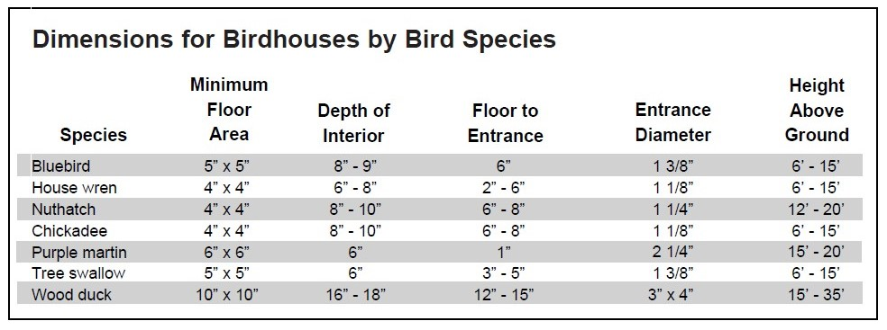 Bird House Entrance Hole Dimensions