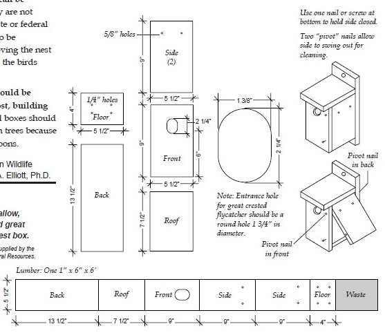 Free Bluebird House Plans - Build a House for a Bluebird