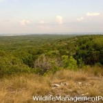 Prescribed Burning for Wildlife Management, Improve Habitat