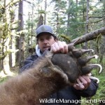 Hunters Kill Big Grizzly Bear in Canada